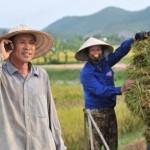 Hòa mạng sim nhà nông của Vietnamobile tám thả ga