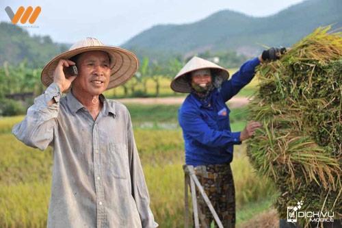 Tám thả ga với Sim nhà nông Vietnamobile