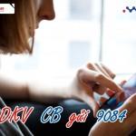 Đăng Ký dịch vụ chặn cuộc gọi Call Barring Mobifone 2017