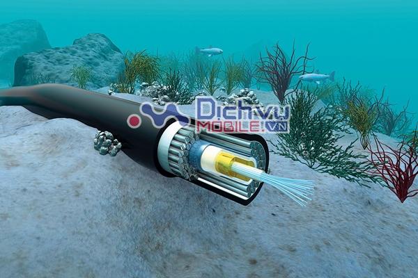 Cáp quang biển AAG bảo trì gây gián đoạn việc truy cập Internet
