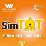 Miễn phí gọi nội mạng mãi mãi với Sim Tốt của Vietnamobile