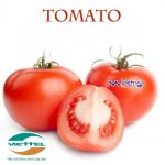 Cách chuyển đổi gói cước Viettel sang sim Tomato không cần gọi tổng đài