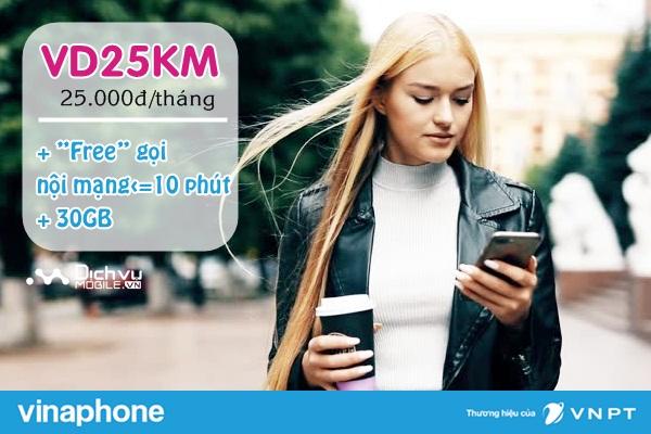 Hướng dẫn đăng ký gói VD25KM mạng Vinaphone