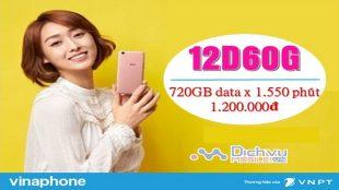 goi cuoc 12D60G Vinaphone