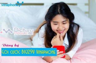 goic cuoc BIG129V Vinaphone